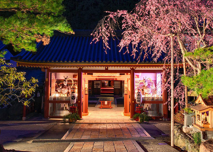 2. Sekisho-in – Unwind in a Dynamic, Lively Temple Stay!