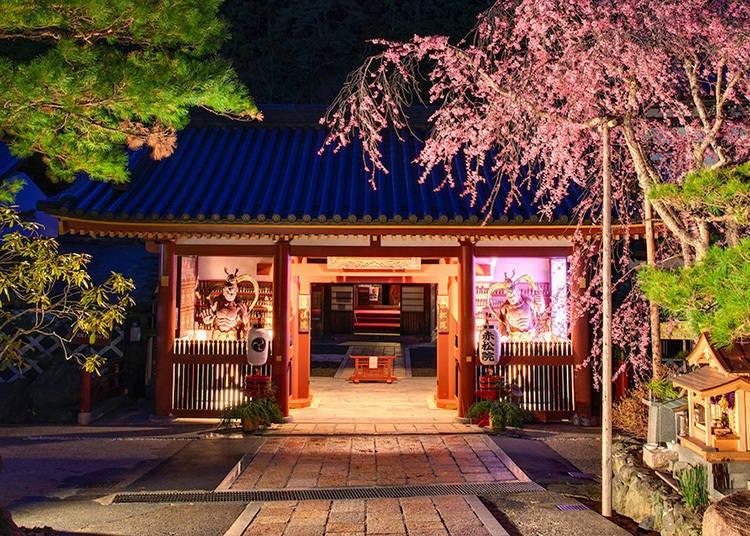 高野山宿坊②滿懷風情的建築物「赤松院」