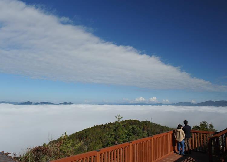 7.映えること間違いなし!雲海が見られる「かめおか霧のテラス」