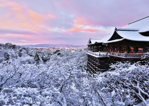 Beyond Stunning! Kyoto's Most Gorgeous Temples Explored!