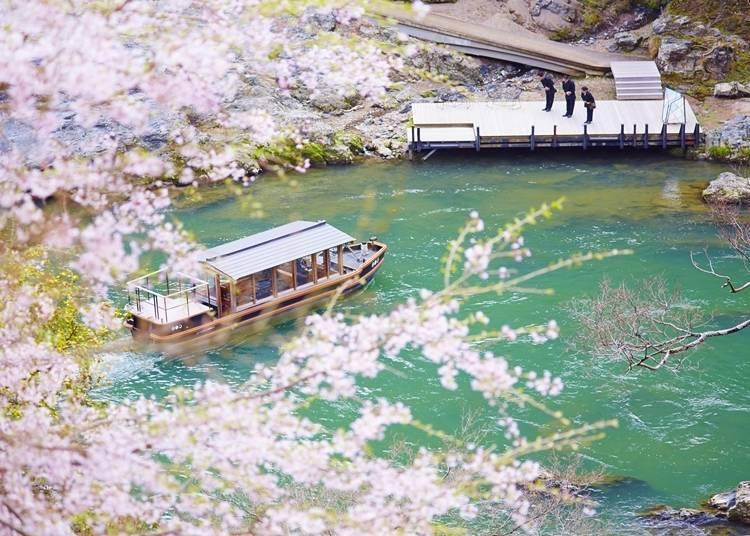 도게쓰교 근방에서 보는 아라시야마의 벚꽃을 만끽하려면 '호시노야 교토'