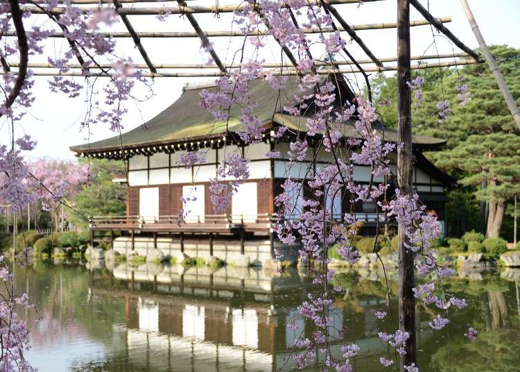京都を代表するベニシダレの名所・平安神宮など東山界隈を散策するなら「ホテル平安の森 京都」