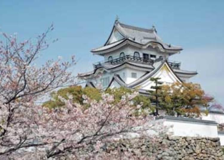 4. Kishiwada Castle Festival