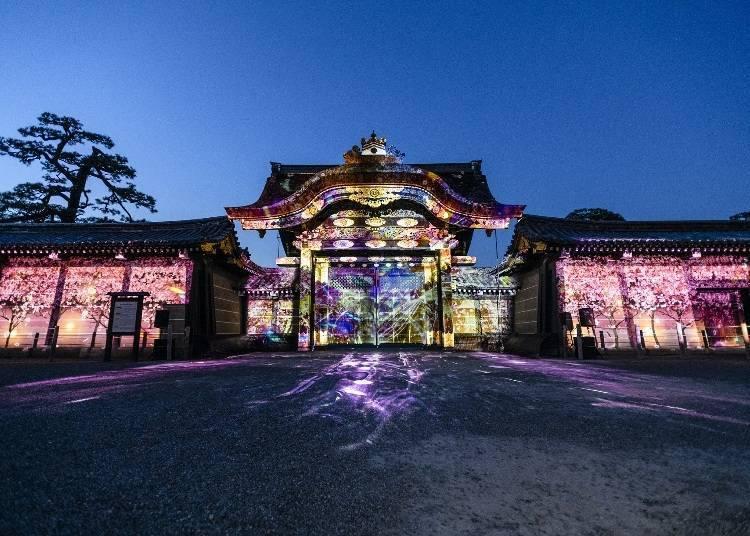 5. 옛 별궁 니조 성 니조 성 벚꽃축제 2021