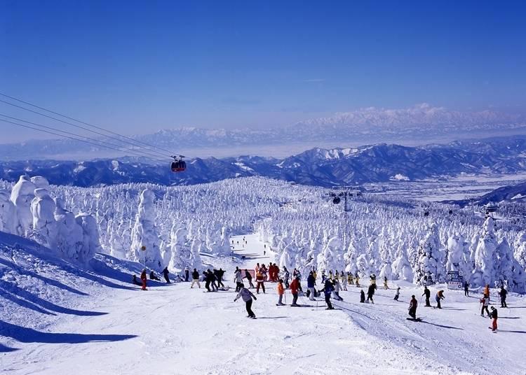 12:「蔵王温泉スキー場」でスキーと樹氷を楽しむ