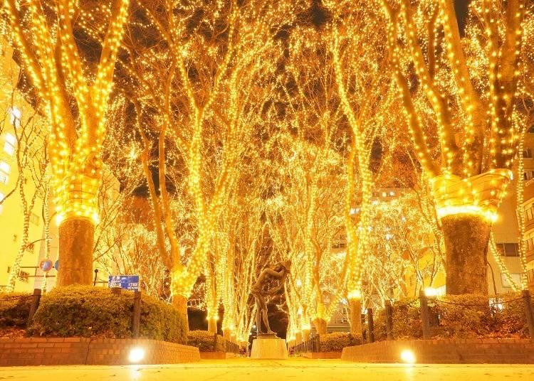 9.冬はイルミネーションに彩られた美しい光のトンネルを歩く