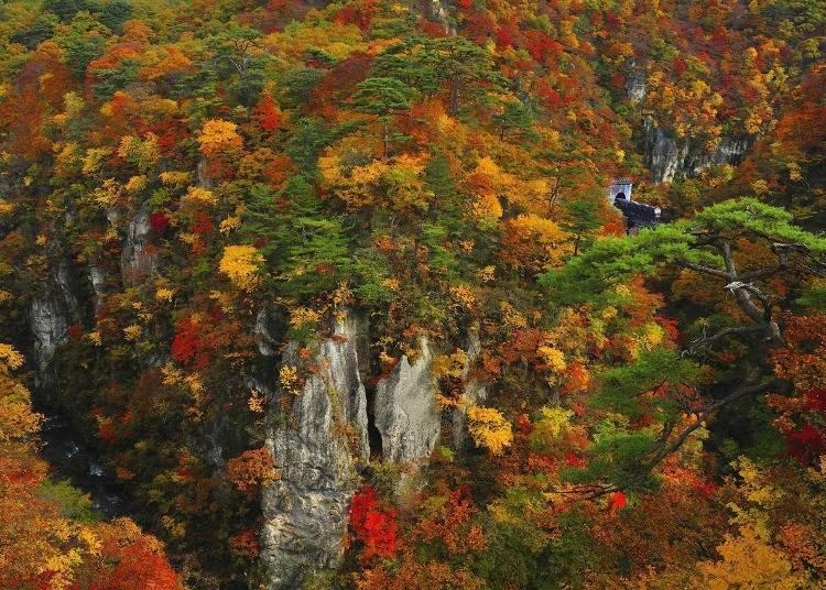 8. 가을은 감동적인 나루코쿄(협곡)의 단풍