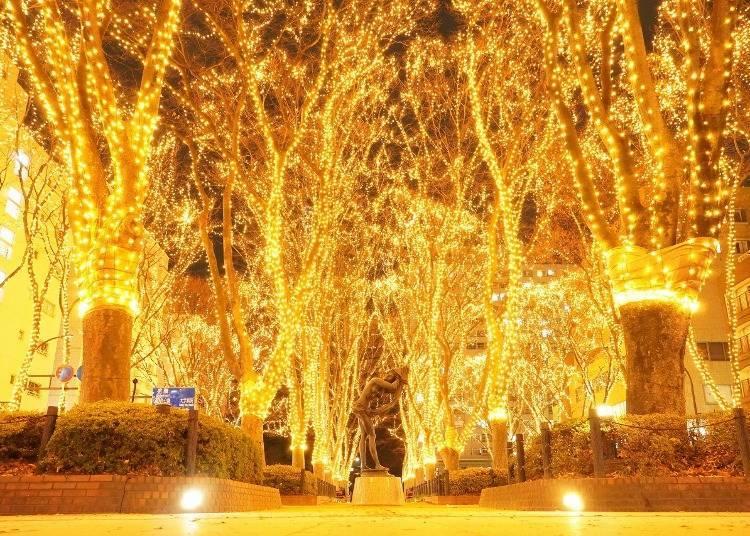 9. 겨울에는 일루미네이션으로 장식된 아름다운 빛의 터널로
