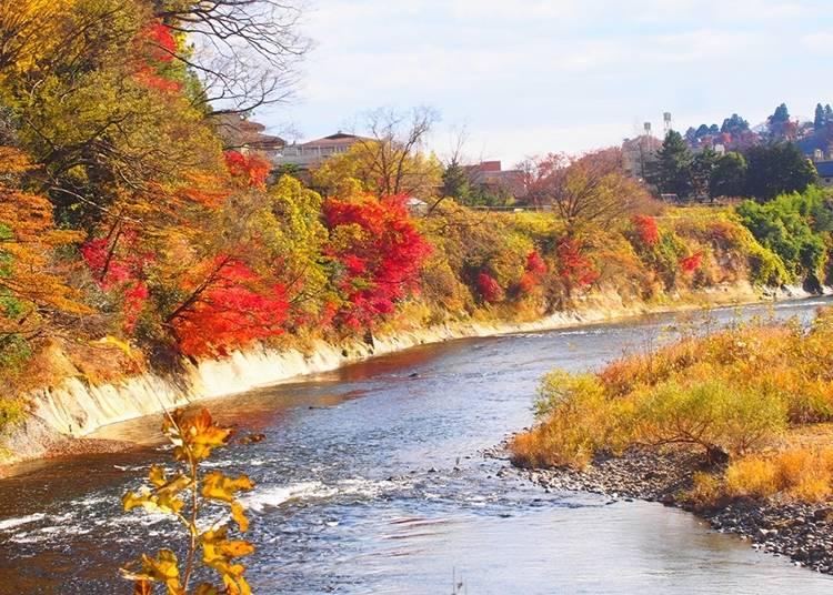27.히로세 강