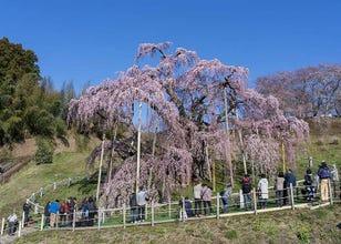 Fukushima Sightseeing: Top Attractions and Places to Visit in Fukushima
