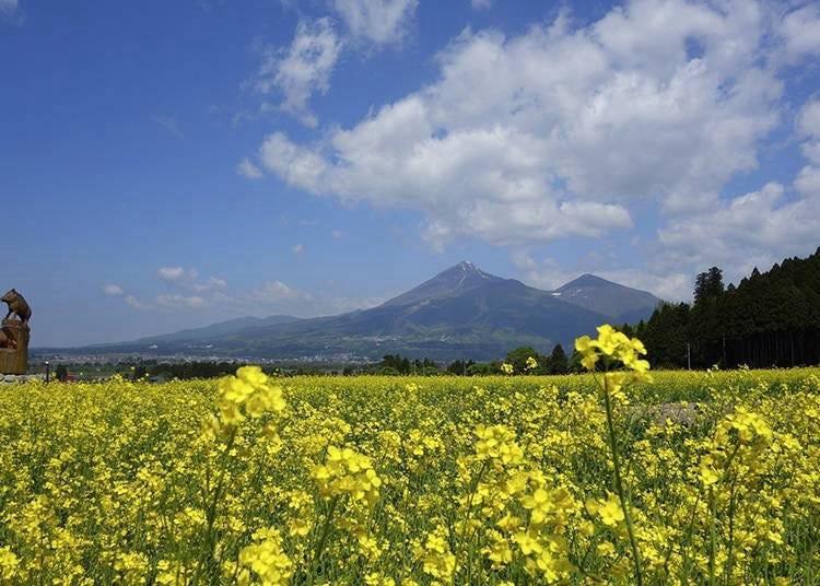 후쿠시마는 어떤 지역인가?