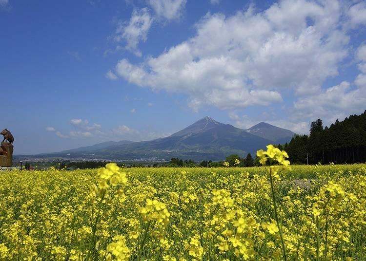日本國內第三大的「福島縣」是一個怎麼樣的地方?