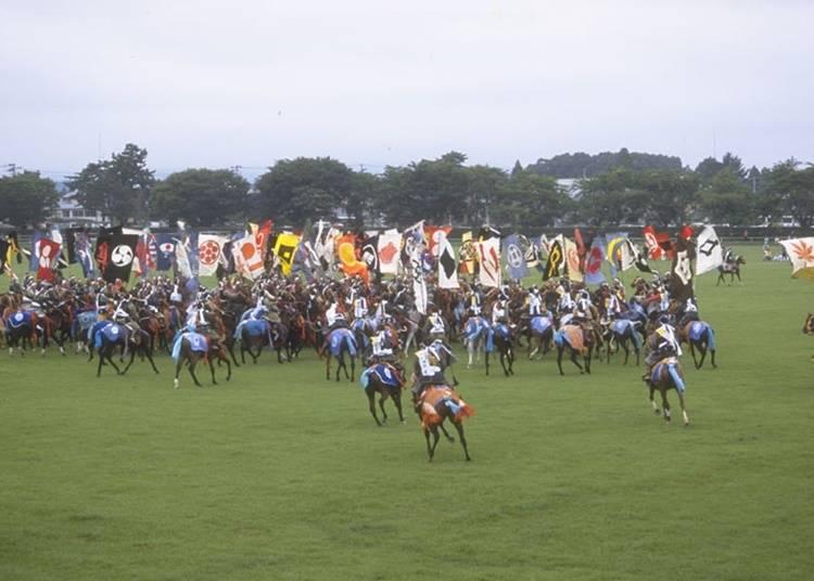 13.體驗武士們的「相馬野馬追」傳統活動