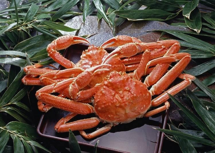 8. Enjoy Niigata's specialty: red snow crab