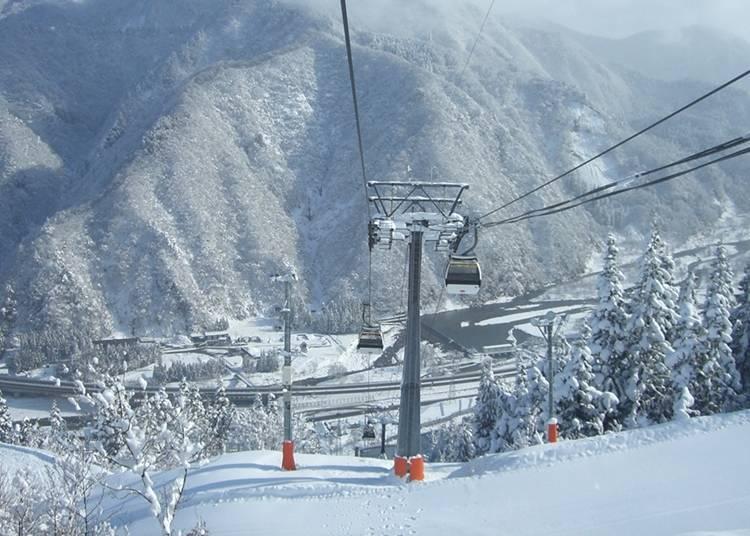8.GALA汤泽滑雪场