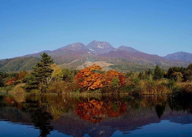新潟自由行體驗⑲妙高山與蠑螈池