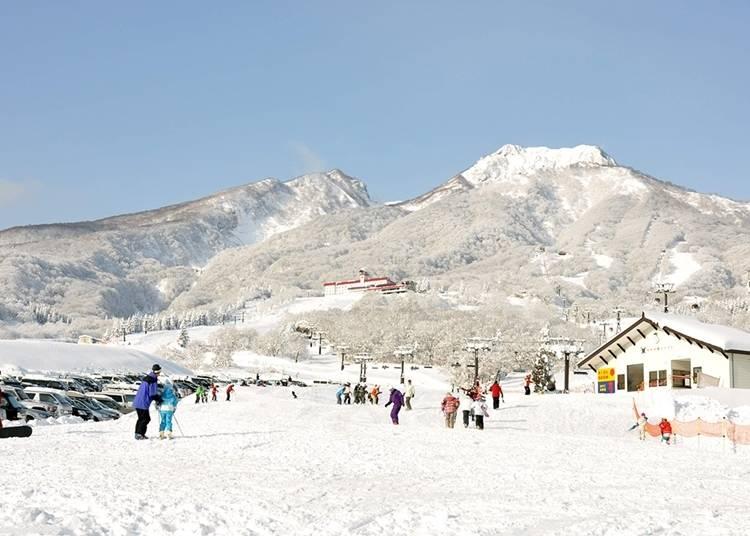 新潟自由行體驗㉒赤倉觀光休閑滑雪場