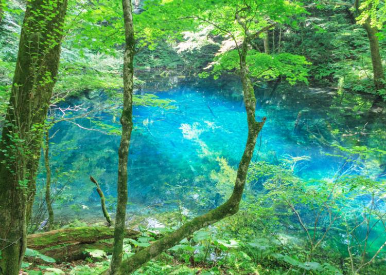 青森旅行の楽しみ方ガイド。おすすめ観光地やグルメ・買い物スポットは?