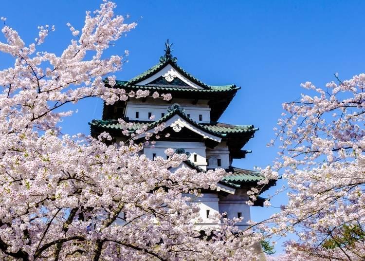 4. Hirosaki Castle and Hirosaki Park
