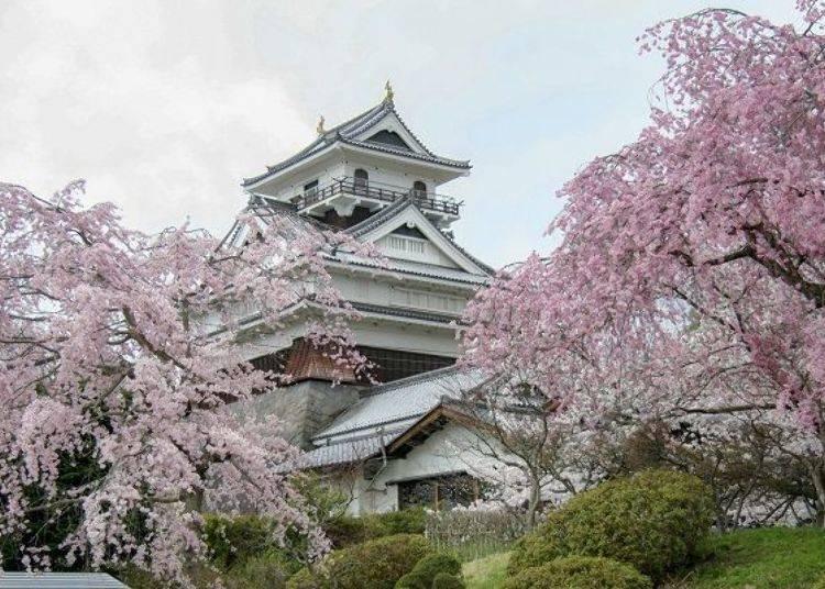 Kaminoyama Onsen: Visiting Yamagata's Beautiful Hot Springs Town!