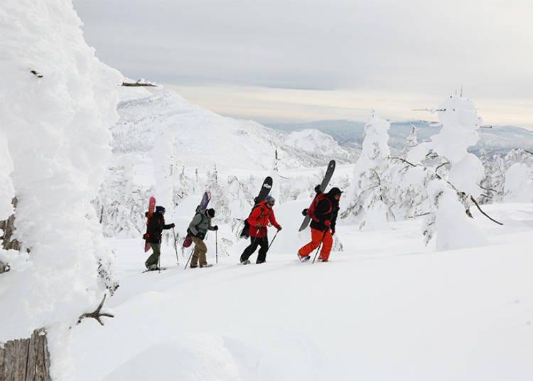 Miyagi Zao Sumikawa Snow Park Tour #1: Walking Snowshoe Tour through Frost-Covered Trees