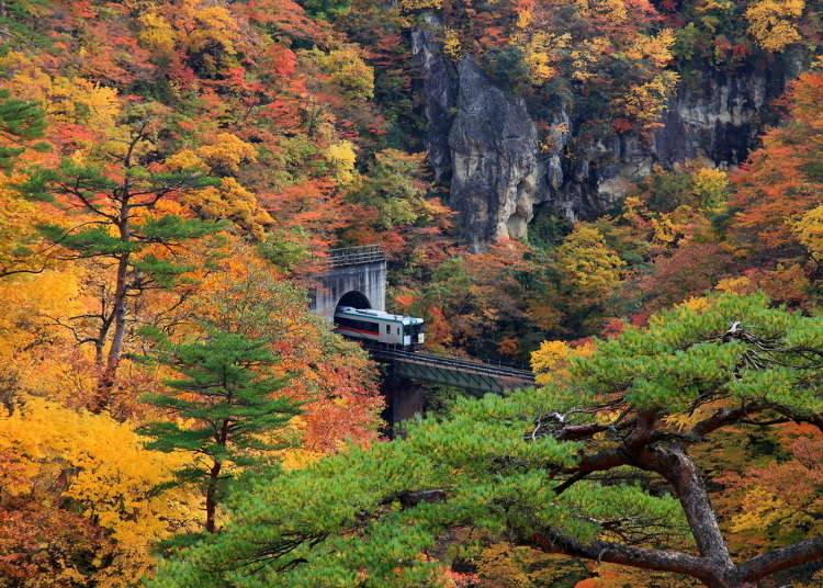 Tohoku Japan Guide: Top 10 Scenic Spots - Geibikei, Naruko Gorge, and More!