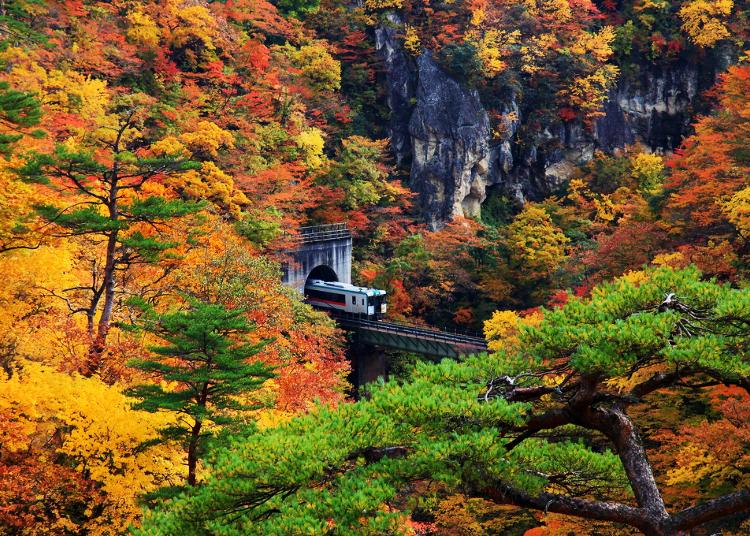 猊鼻渓や鳴子峡、東北の絶景が鮮やかに染まる紅葉スポット10選