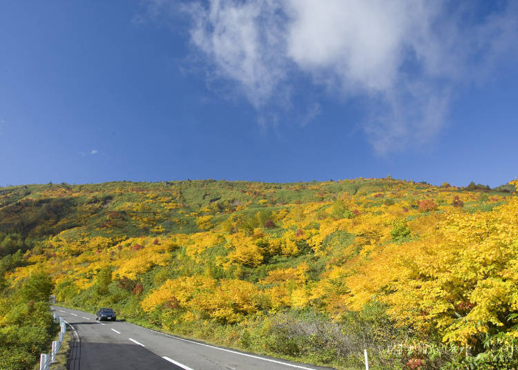 3. Hachimantai Best Time: Late September~Late October