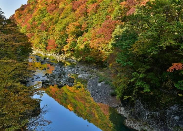 5.抱返り渓谷 見ごろ:10月中旬~11月上旬