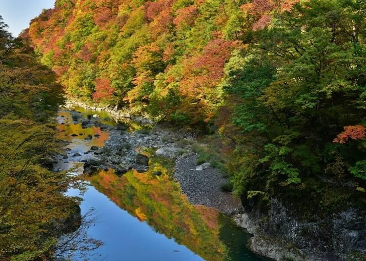 5. 다키가에리 계곡 (절정기: 10월 중순~11월 초순)