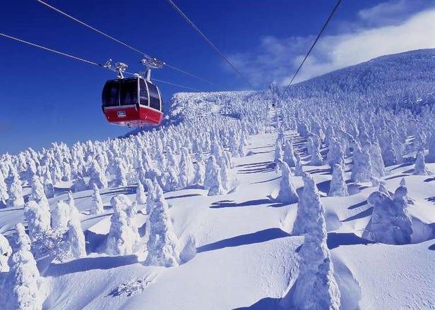 2021日本东北滑雪场10选!山形、藏王、青森、福岛、岩手等