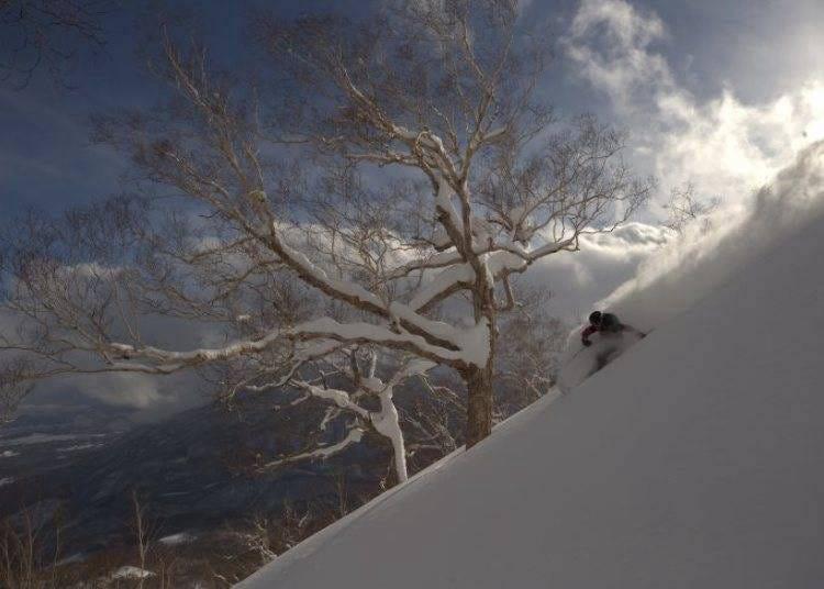 12. Myoko Suginohara Ski Resort: Japan's Longest Run  (Niigata)