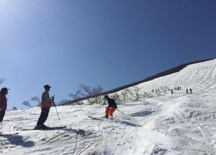 「月山スキー場」夏スキーのメッカといえばここ!