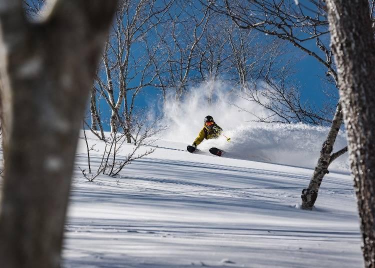 「夏油高原スキー場」ツリーランエリア拡大中の豪雪スキー場