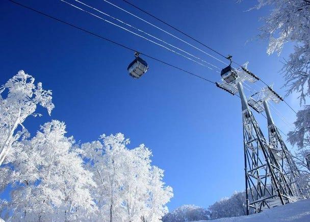 能够眺望到日本海、享受愉快滑雪的「青森春天滑雪度假村」