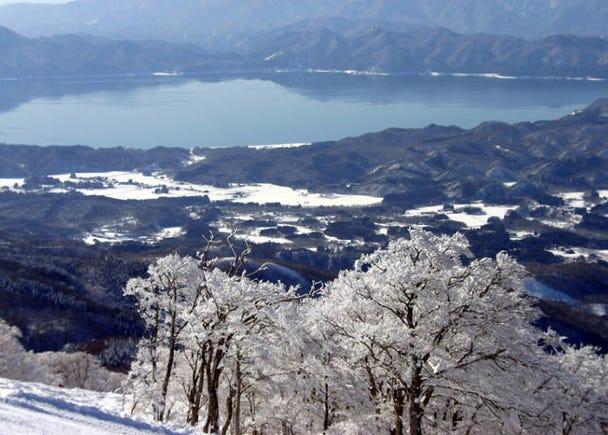 从「田泽湖滑雪场」的斜面滑道向下俯瞰田泽湖美景