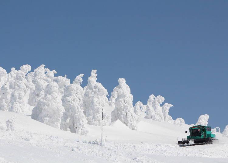 東北滑雪場⑧於「MOUNTAIN FIELD 宮城藏王澄川冰雪樂園」內乘坐雪車享受賞雪之旅