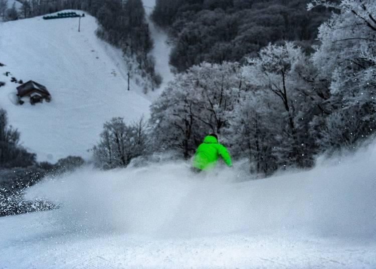 東北滑雪場⑨豐富積雪量的完美粉雪天堂「星野集團 貓魔滑雪場」