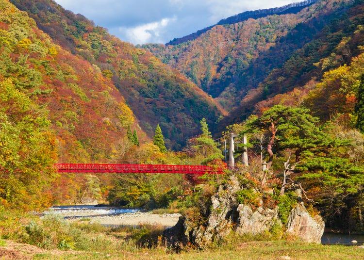 Dakigaeri Gorge Guide: Walk Along Pristine Aqua Blue Streams and Vibrant Fall Colors in Akita Japan