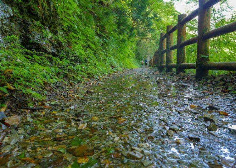 Dakigaeri Gorge's Breathtakingly Beautiful Blue Stream