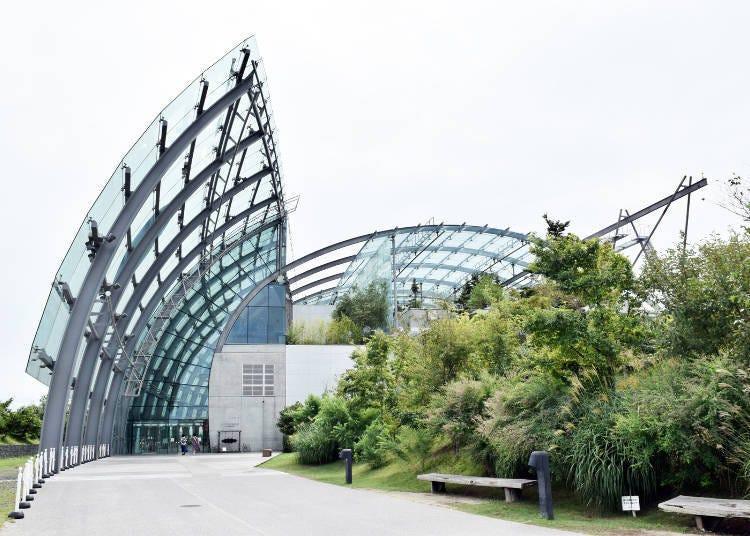 「海藍寶石福島」是什麼樣的水族館呢?