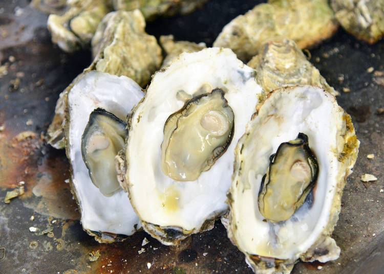 The tastiest way to eat Miyagi oysters: How to get the oysters out of their shell as fast as possible