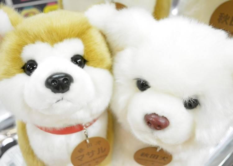 3. 可愛療育表情的「秋田犬Masaru布偶」