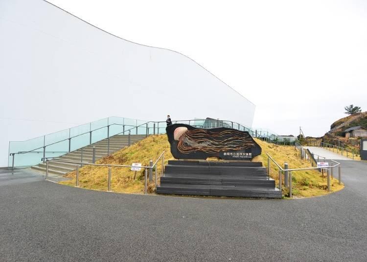 """山形の""""クラゲ水族館""""が今世界で注目されている⁉"""
