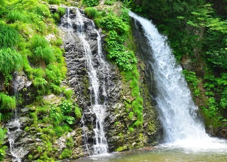 End your trip at Shirogane-no-Taki Falls!