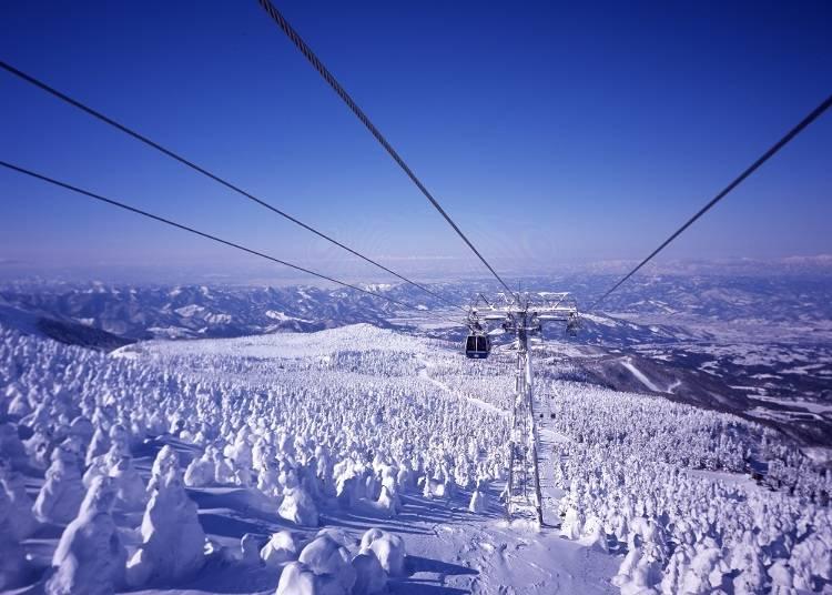 「蔵王ロープウェイ」に乗り、上空から樹氷を鑑賞(所要時間:約1時間)