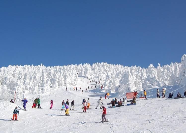 藏王溫泉DAY1行程①日本規模最大的滑雪場「藏王溫泉滑雪場」(所需時間:約4個小時)