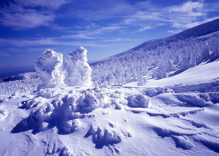 10.蔵王の樹氷(宮城・山形)