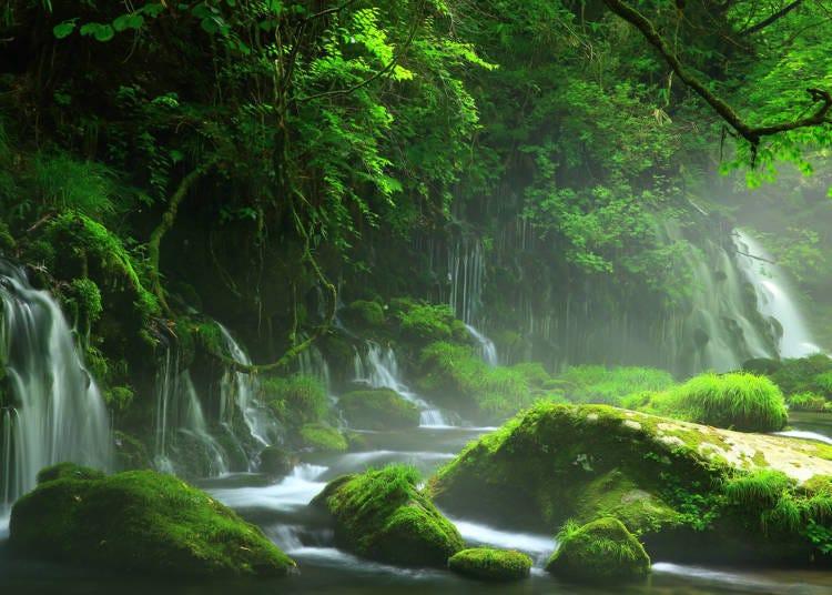 【秋田】神聖氣氛滿溢-元瀧伏流水