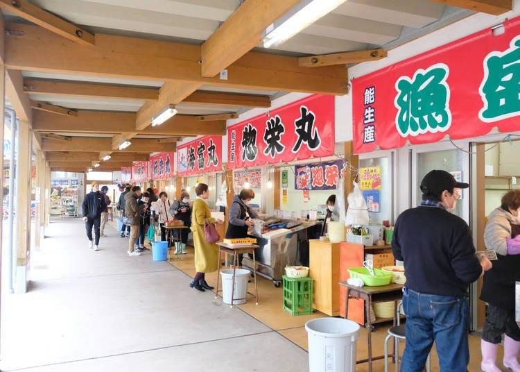 出發尋找紅楚蟹:日本海側規模最大的螃蟹直銷市場-新潟「Marine-Dream能生」